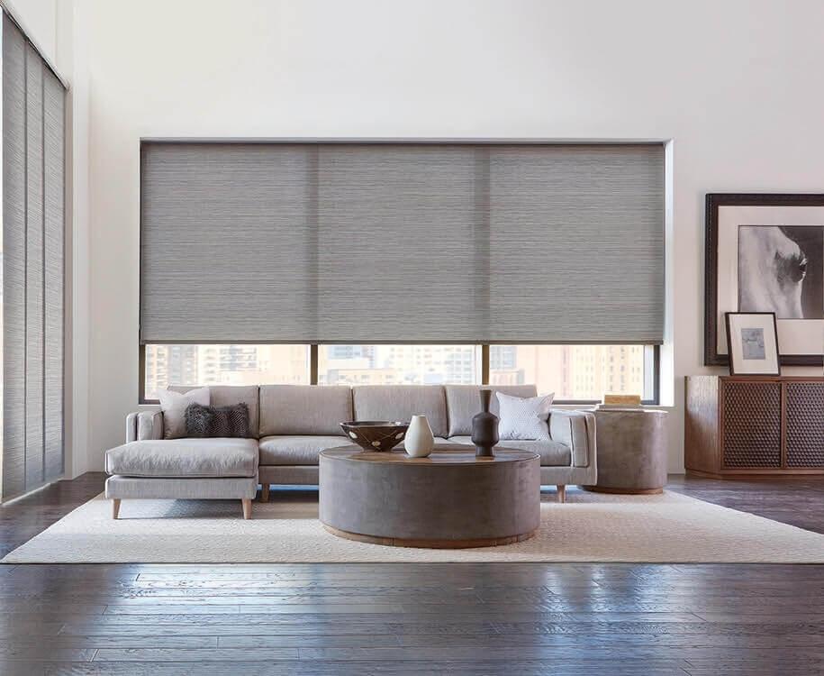Living Room Window Treatment Inspiration: Modern regarding Living Room Window Shades