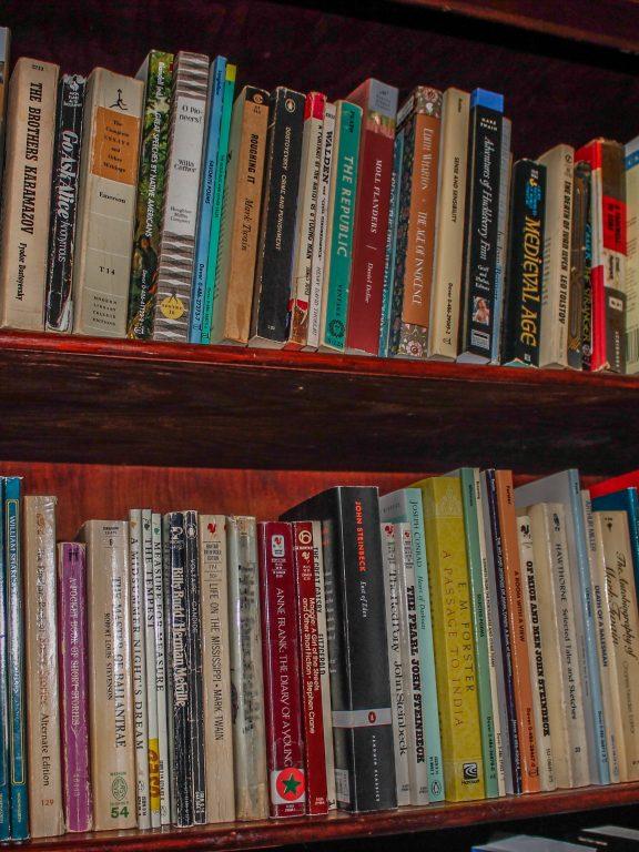 Bookshelf Ideas For Lots Of Books